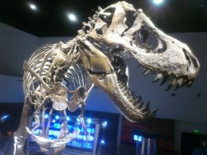 DSC 1649 300x225 マニラに出来た科学博物館「マインド博物館」